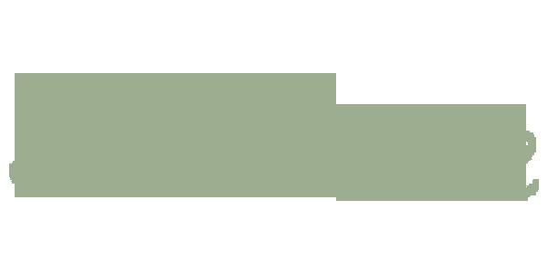 Link www.scintille.org